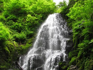 Fairy Falls on the Wahkeena trail