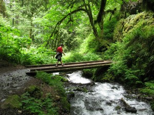 Chris Martin crossing a bridge over Wahkeena springs